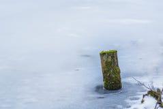 Eingefroren über See Lizenzfreie Stockfotos
