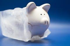 Eingefrorene Vermögenswerte Stockbilder