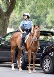 Eingehangene Polizeibeamtin Lizenzfreie Stockfotos