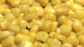 Eingemachte Maiskerne 2 Schüsse Langsame Bewegung stock video footage