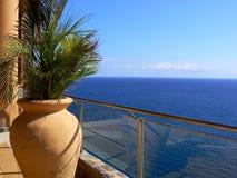 Eingemachte Palme auf Balkon durch das Meer Lizenzfreies Stockbild