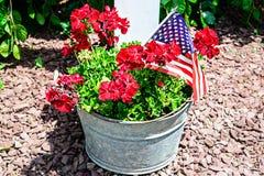 Eingemachte rote Blumen und Flagge im Stahlbecken Stockbild