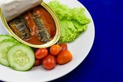 Eingemachte Sardinenfische in der Tomatensauce dienten auf Teller mit Salat Stockfoto
