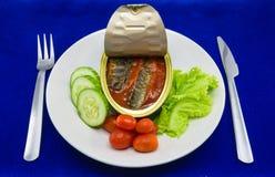 Eingemachte Sardinenfische in der Tomatensauce dienten auf Teller mit Salat Lizenzfreies Stockbild
