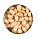 Eingemachter Pinto Beans Lizenzfreie Stockbilder
