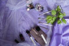 Eingestellt von den Make-upb?rsten, err?ten Berufsmake-upwerkzeuge, B?rsten f?r verschiedene Funktionen, und Lacke Frauen ` s Mod lizenzfreie stockfotografie