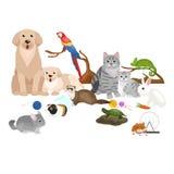 Eingestellten die Haupthaustiere, Katzenhundepapageien-Goldfischhamster, domestizierten Tiere Lizenzfreies Stockfoto