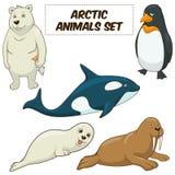 Eingestellter Vektor der Karikatur arktische Tiere Stockfotografie