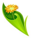 Eingewickelte Blume Lizenzfreies Stockfoto
