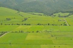Eingezäunte Blöcke des grünen Ackerlands Stockfotografie