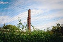 Eingezäunter Plan des Maschendrahts Zaun stockfotografie