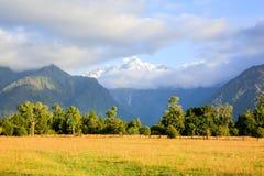 Eingezäunter Platz für gehende Kühe Haast, Neuseeland Lizenzfreie Stockbilder
