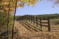 Eingezäunter Bauernhof Stockbild