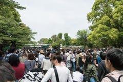 Einheimische, die Leute sind, stehen oben an, um Ueno-Zoo am goldenen Wochenfeiertag zu betreten stockfotos