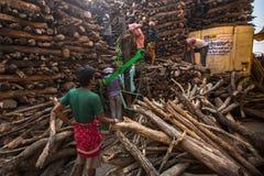 Einheimische nahe dem heiligen Ganges wogen für Verkaufsholz für Verbrennung lizenzfreie stockbilder