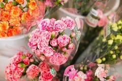 Einige Blumensträuße der Gartennelke bereit zum Verkauf in einem Straßenblumenmarkt stockfotografie