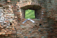 Einige Details von mittelalterlichen italienischen Städten Lizenzfreie Stockbilder