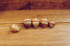 Einige Eicheln auf dem Holztisch lizenzfreies stockbild