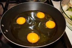 Einige Hühnereien hoben aus den Grund an Eier setzen sich in eine Wanne in einer Gruppe und bereiten für das Kochen vor gekocht u stockfotos