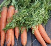 Einige Karotten Lizenzfreie Stockfotos