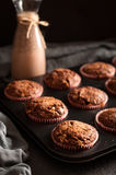 Einige Muffins in der Backenform Stockbild