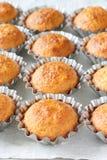 Einige Muffins in der Backform Lizenzfreie Stockfotografie