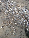 Einige nasse Felsen auf einem sandigen Strand Stockbilder