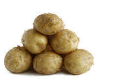 Einige reife Früchte von Kartoffeln Stockfotos