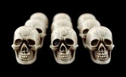 Einige Reihen der Halloween-Schädel Lizenzfreie Stockfotos