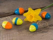 Einige selbst gemachte farbige Ostereier mit einem Ostern blühen Stockfotografie