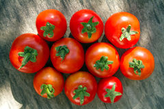 Einige Tomaten nebeneinander Stockbild