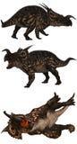 Einiosaurus Fotografie Stock