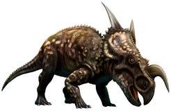 Einiosaurus Royaltyfri Fotografi