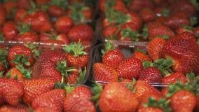 Einkaufen in der jungen Mutter des Supermarktes mit Kindern stock video footage