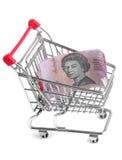 Einkaufenlaufkatze Stockbild