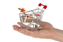 Einkaufenlaufkatze mit Geschenk Stockfotografie