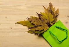 Einkaufstasche mit dem gesammelten gefallenen Herbst verlässt, heller Hintergrund Herbstkaufkonzept Bunte Blätter des Herbstes he Lizenzfreie Stockfotos