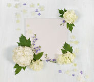 Einklebebuchseite mit den weißen und blauen Blumen Lizenzfreie Stockbilder