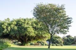 Einladende ländlich idyllisch Park-Szene Stockfotografie