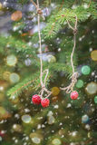 Einladung des neuen Jahres Erdbeeren, die an einem Fichtenzweig hängen Lizenzfreie Stockbilder