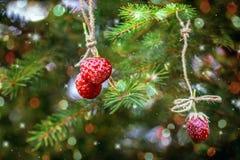 Einladung des neuen Jahres Erdbeeren, die an einem Fichtenzweig hängen Stockbilder