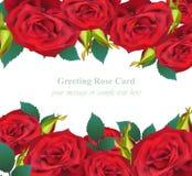 Einladungs-Karte Vektor Blume der roten Rosen Empfindliche realistische mit Blumenillustration Stockfoto