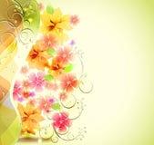 Einladungskarte mit Blume Stockfotos