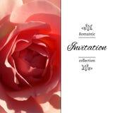 Einladungskarte mit einem blassen - Rosarose Spanisches Art colonal ENV, JPG Lizenzfreie Stockfotos