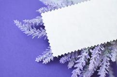 Einladungskarte mit leerem Raum für Text auf Lavendelhintergrund Lizenzfreie Stockfotografie