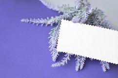 Einladungskarte mit leerem Raum für Text auf Lavendelhintergrund Lizenzfreies Stockbild