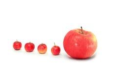 Eins nach dem anderen rote Äpfel auf Weiß Stockfotografie