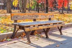 Einsame alte Bank im Herbststadtpark Stockfotografie