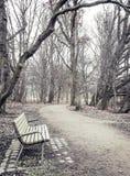 Einsame alte Holzbank im Freien Lizenzfreies Stockfoto