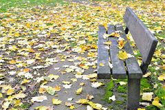 Einsame Bank im Herbstpark Stockfotos